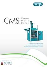 CMS flyer